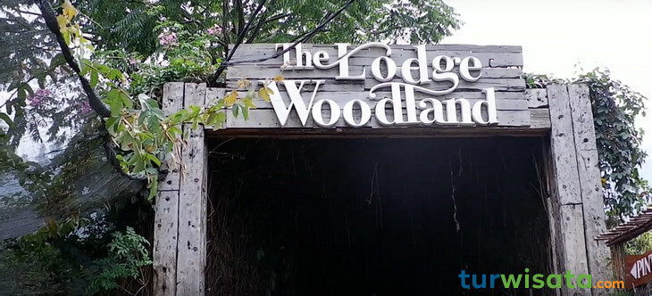 The Lodge Woodland